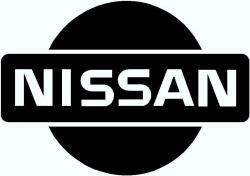 NISSAN DAN's Photo